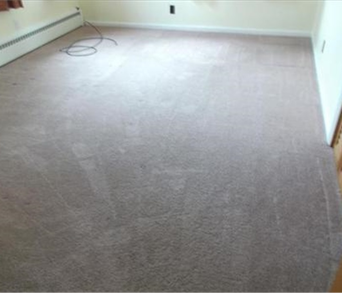 Cleaning Spring Carpet Cleaning